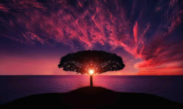 La vérité sur Dieu : Dieu existe ? Qui est-Il ?
